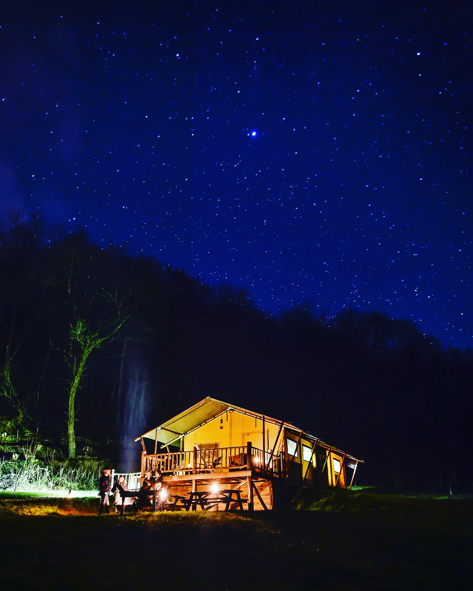 Star Gazing Holiday at Loose Reins Dorset