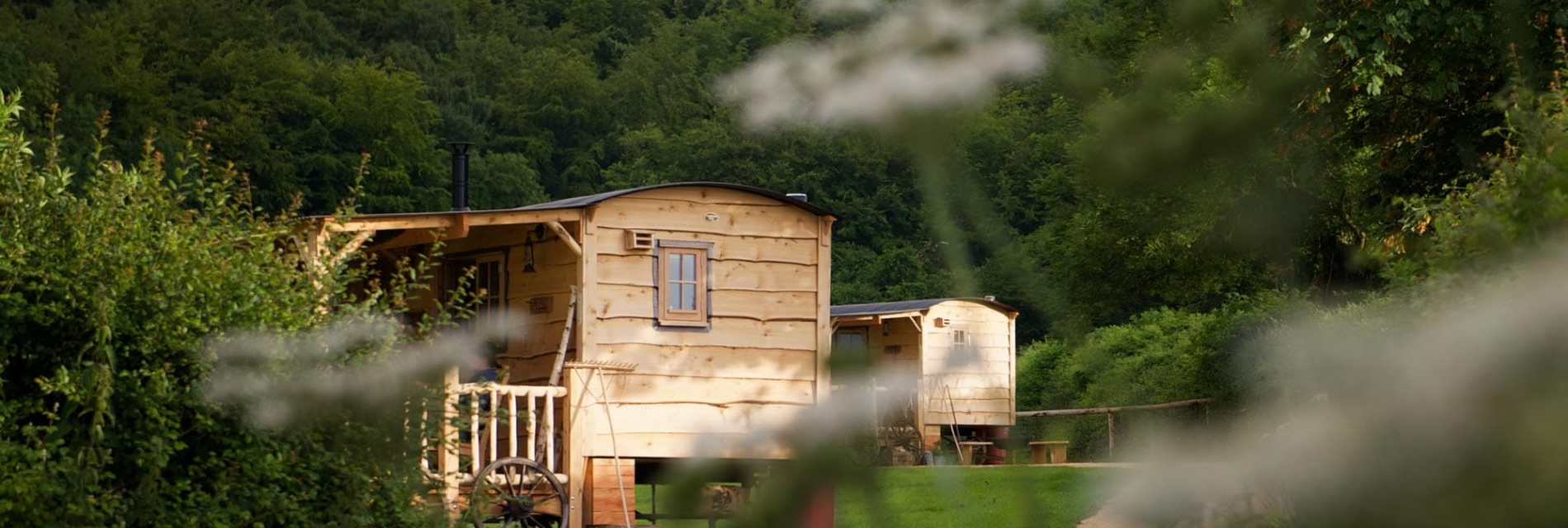 Loose Reins Glamping Accessibility Guide