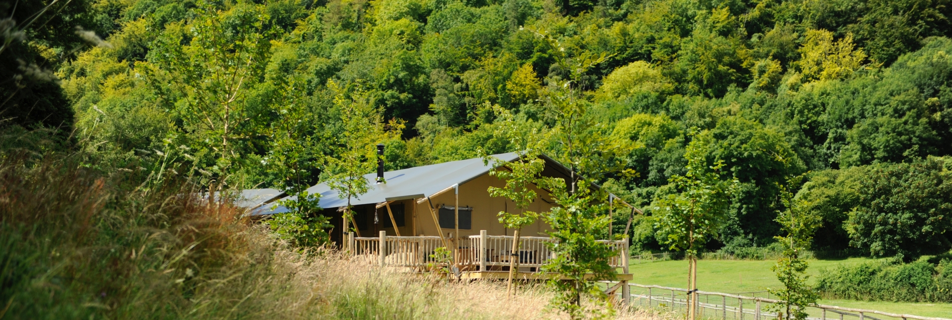 Lodges at Loose Reins surrounded by scenery