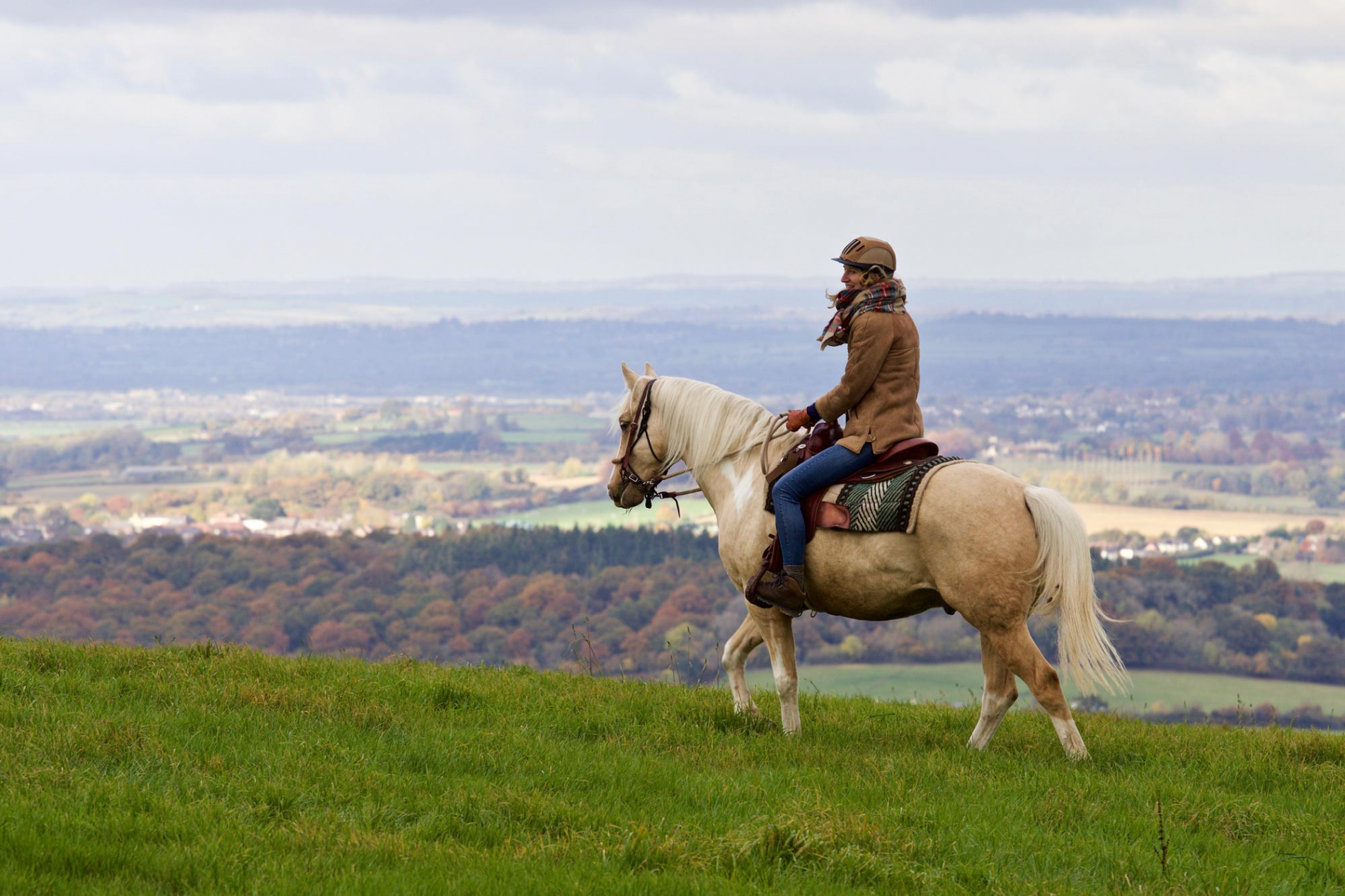 Horse riding on the hill tops