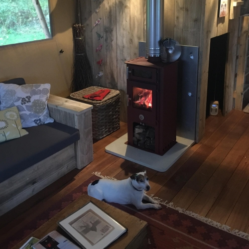 Cabin Holidays with the Dog