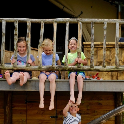 Playful Games in our Lodges