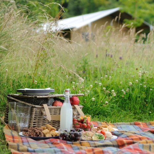 Picnic in the heart of Loose Reins