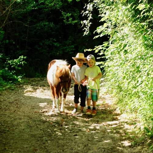 Family Horse Riding at Loose Reins